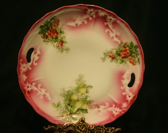 Lovely hand painted with fruit design Plate