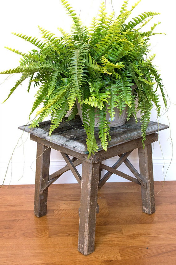 Reclaimed Wood Plant Stand Indoor Plant Stand Rustic Plant