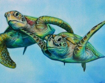Limited Edition Sea Turtles Drawing Art Print