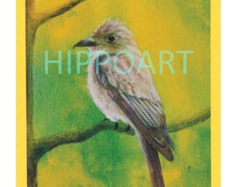 WOOD PEWEE Southwest Greeting Card