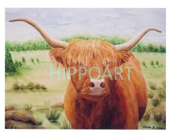 HIGHLAND STEER Greeting Card