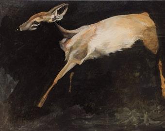 Dreamland Deer.