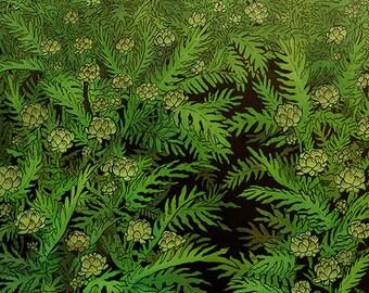 Artichoke Field Print