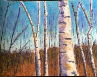 Birches on a Crisp Fall Day