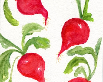 Watercolor painting, Radishes watercolors paintings original, Vegetable Series, 5 x 7, Kitchen Art, Home Decor, Original Red Radishes decor