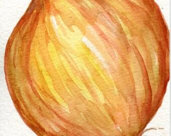 Yellow Onion Watercolors Paintings original, kitchen art, Vegetable painting, 4 x 6, original watercolor painting of yellow Spanish onion