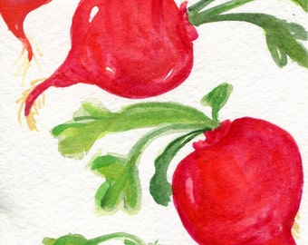 Radishes watercolors paintings original, 4 x 6, vegetable kitchen decor, original watercolor painting of radishes