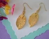 Gold Leaf Earrings, Rose Leaf, Real Leaf Earrings, 24kt Gold, Nature, LESM55