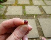 Glass Fairy garden micro mini accessory - tiny ladybug - made to order