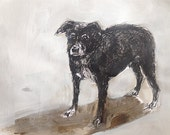 Ink drawing and painting of a Border Collie Rhodesian Ridgeback dog