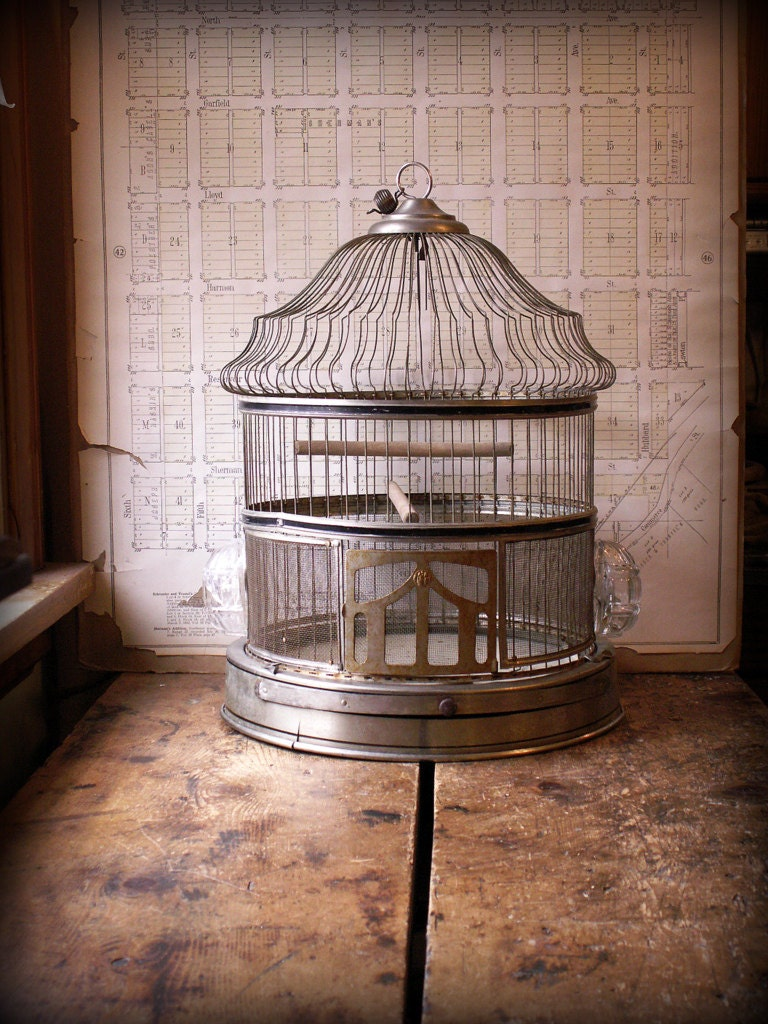 Vintage Hanging Bird Cage with Black Stripe Accents and Two