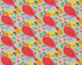 TUCAN cotton poplin