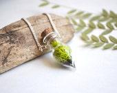 Moss Necklace, Glass Terrarium Necklace, Miniature Terrarium Necklace, Botanical Jewelry, Moss Jewelry, Plant Necklace, Live Specimen