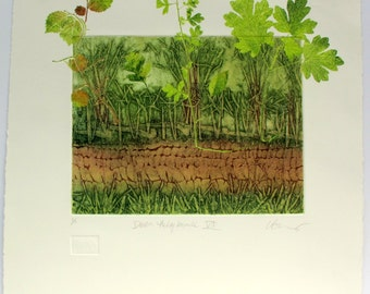 Fine art print. Devon hedgerow artwork. Collagraph mono print. Handmade printmaking