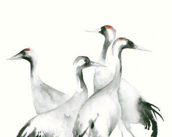 Watercolor Artwork Four Cranes Fine Art Print from Original Watercolor