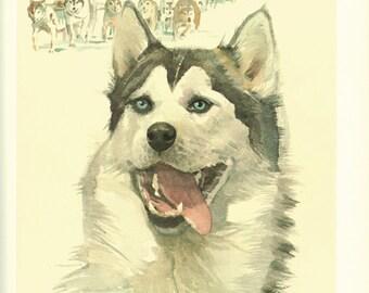 1975 Vintage dog poster Siberian Husky poster Dog print Dog art dog gift Husky art gift for dog owner Siberian Husky Dog painting