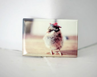 Chicks in Hats Chick In A Scottish Tam O Shanter Hat Rigid Rectangle Magnet Baby Animals