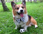Football Soccer dog butterfly bow tie Pet bowtie black and white Dog bow collar attachment for medium large dog ( L)