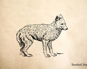 Custom Jackal Rubber Stamp for Bweha - 2 x 2 inches