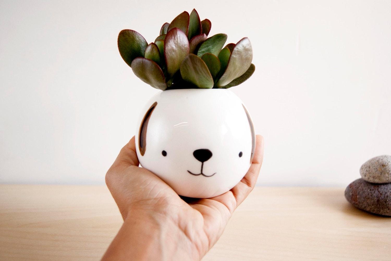 Superior Cute Plant Pots Part - 11: ?zoom