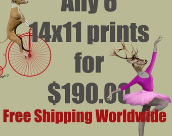Any 6 14x11 prints for 190Dollars - FREE SHIPPING WORLDWIDE