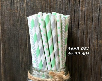 Silver Straws, Mint Paper Straws, 100 Paper Straws, Chevron Straws, Birthday Party, Shower Party Supply, Wedding Straws, Free Shipping