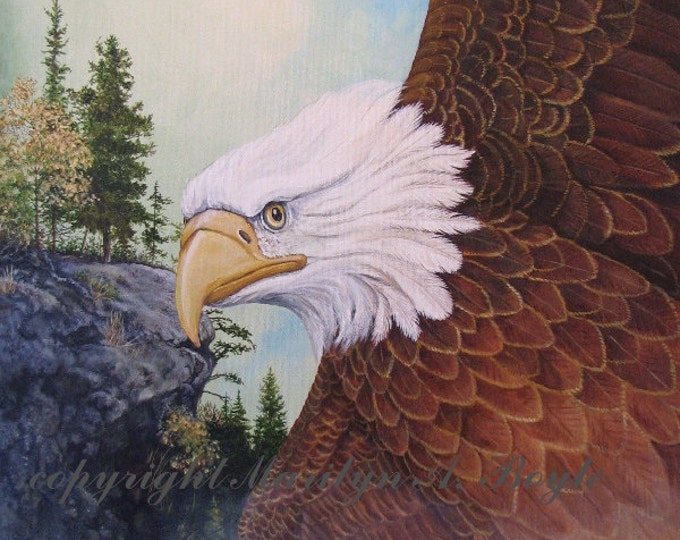 GICLEE PRINT-EAGLE;Bald eagle, flying, wings, feathers, wall art, wilderness, cliff, nature,retirementgift, gift for anyone