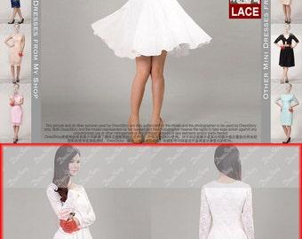 White Lace Chiffon Dress / Little White Dress / White Fit and Flare Dress / Long Sleeve Lace Dress / Navy Lace Dress - Pink Lace Dress / CD2