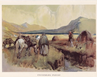 Connemara Ponies Horse Lionel Edwards vintage print native british breed working pony equine illustration