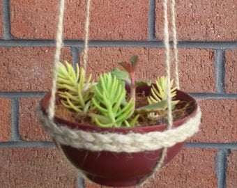Handcrafted hanging planter with succulents