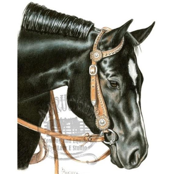 Black quarter horse mare portrait in colored pencil for Disegni di cavalli a matita