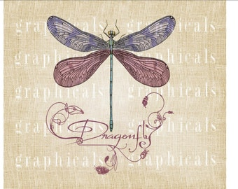 Marsala dragonfly instant digital download graphic print image for use on iron on transfer burlap pillow totebag Paper Decoupage No. 2229