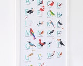 A3 Bird Alphabet print