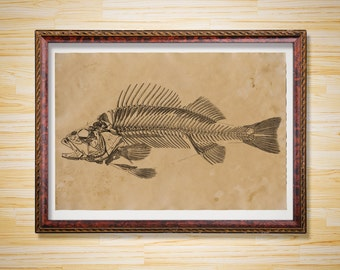 Fish poster Anatomy print Skeleton decor