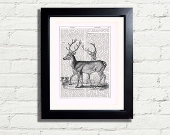 Stags Deer Woodland Animal Creature Nature Wall Art Print INSTANT DIGITAL DOWNLOAD A4 Printable Pdf Jpeg Image  Home Décor Gift Idea