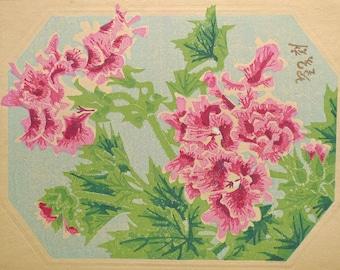 "Ukiyoe, Original Sōsaku-hanga, Woodblock print, antique, Eichi Kotozuka, ""Pelargonium"""