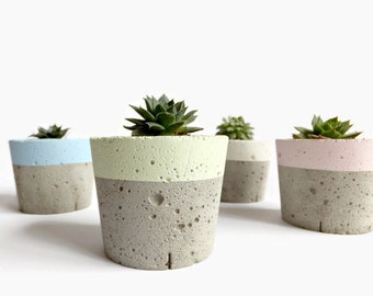 Pastel Concrete Mini Planter for Succulent Home Decor Modern Planter