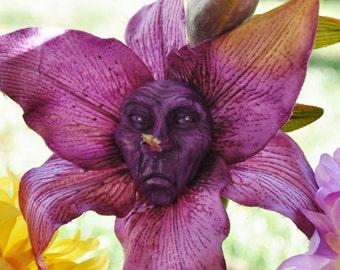 "Alice in Wonderland Talking Flower ""Mr Grumpy"" by Jennifer Sutherland resin collection"