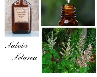 Clary Sage Essential Oil, Clary Sage Oil, Clary Sage Essential Oil Uses, Clary Sage Essential Oil Uses, Clary Sage