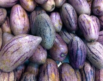 Pepino Melon Fruit seed/ Solanum Muricatum