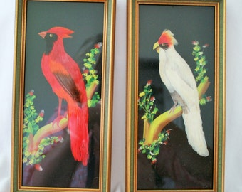 Feathercrafted Vintage Bird Framed Pictures