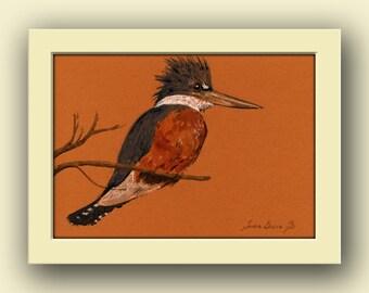 Kingfisher bird- Belted Kingfisher watercolor animal decor- wildlife bird nursery wall art - Original watercolor painting- Juan Bosco