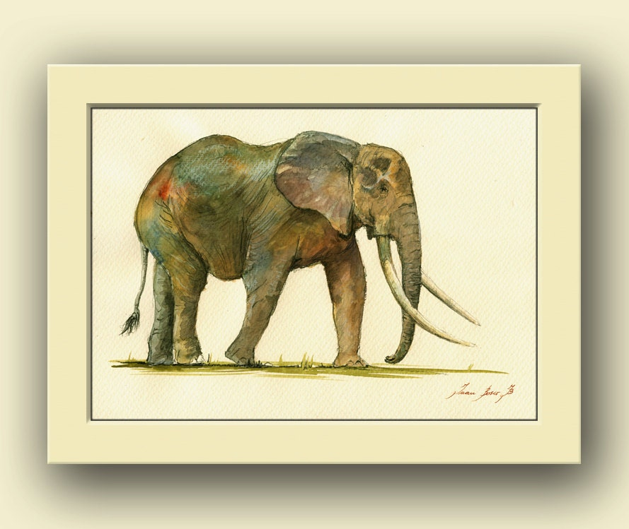 Elephant animal africa elephant safari animal decor animal African elephant home decor