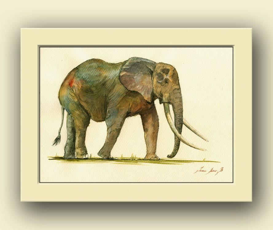 Elephant Animal Africa Elephant Safari Animal Decor Animal: african elephant home decor