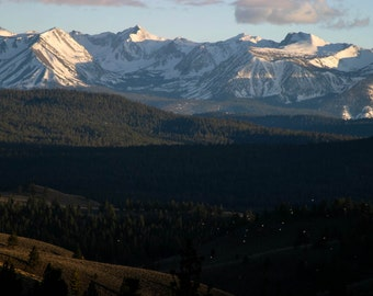 View of the Sierras and gulls, Clarks Canyon, California