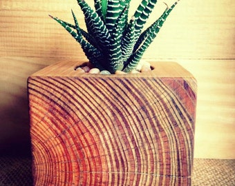 Reclaimed Fence Post Planter