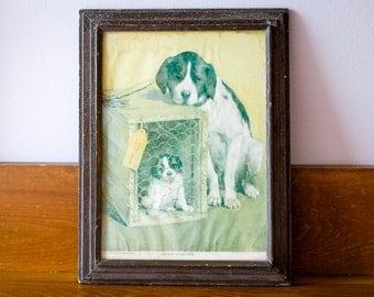 Antique Framed St Bernard Dog Print - The Last of the Litter - 1925 Pub. By W.C. Co., Tyrone, PA. - St Bernard Art Print