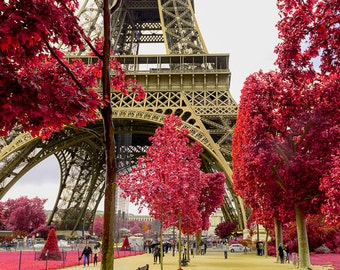 Champs du Mars, Eiffel tower, Red tree, Paris photo, Canvas print, Wall decor, Home decor, Paris decor, Paris canvas, Gallery wrap