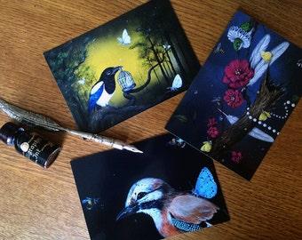 Postcard Set of 12 cards - Animals Extraordinaire 1