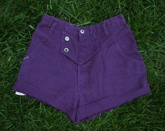 Rare Vintage Blaze High Waisted Shorts 80s